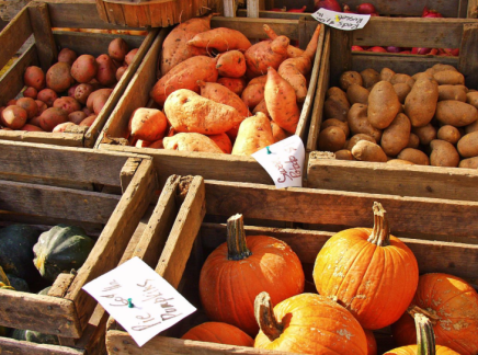 What Your Favorite Fall Foods Say About You